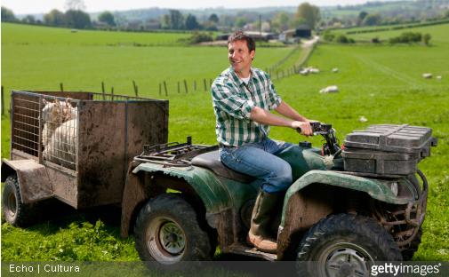 Que ce soit pour  une remorque agricole ou une remorque de tourisme, fiez-vous aux spécificités communiquées par le constructeur.